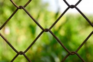 Der Zaun rund ums Gartenschaugelände soll geschlossen bleiben (Symbolfoto)